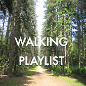 Walking Playlist de Various Artists