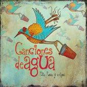 Canciones de Agua de Various Artists