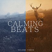 Calming Beats, Vol. 3 (Wonderful Calming Electronic Jazz Music For Beach Bars) by Various Artists