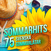 Sommarhits - 75 svenska sommarlåtar by Various Artists