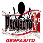 Despasito van Proyecto 11