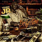 Energy Power & Perfection by Young J.R.