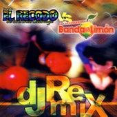 DJ Remix by Various Artists