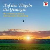 Auf den Flügeln des Gesanges - Die schönsten Lieder in instrumentaler Bearbeitung von Various Artists