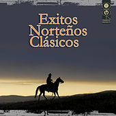 Exitos Norteños Clásicos by Various Artists