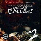 Los Mejores Corridos de las Calles, Vol. 2 by Various Artists