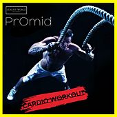 Cardio Workout by Various Artists