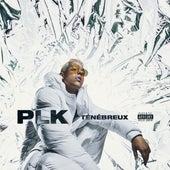 Ténébreux - Single de PLK