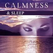 Calmness & Sleep – Peaceful Mind, Deep Sleep, Relaxation Lullabies to Bed, Instrumental Songs, Relaxed Mind von Best Relaxing Music Consort