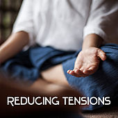 Reducing Tensions - Relaxing Music, Sounds Bringing Relief, Cool Mood, Mind Mute, Calming Body de Ambient Music Therapy