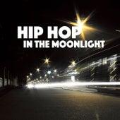 Hip Hop In The Moonlight de Various Artists