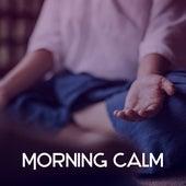 Morning Calm – Deep Meditation, Reiki Music, Silence & Focus, Buddha Lounge, Therapy Sounds, Peaceful Mind by Meditation Awareness