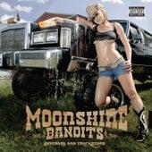 Divebars and Truckstops by Moonshine Bandits