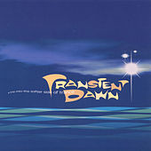 Transient Dawn de Various Artists
