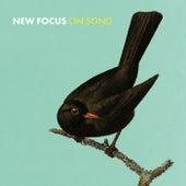 New Focus on Song by Konrad Wiszniewski