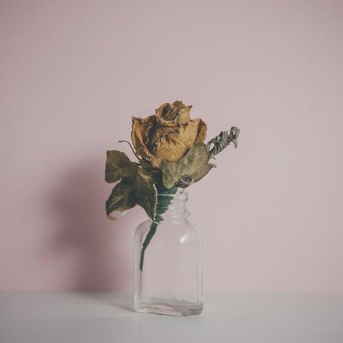 Belong (feat. Kimbra) (Batuk Remix) by Fyfe