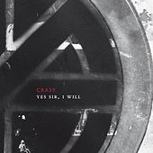 Yes Sir, I Will by Crass