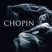 Chopin dla Ciebie de Various Artists