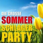 Die große Sommer Schlagerparty von Various Artists