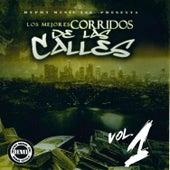 Los Mejores Corridos de la Calles, Vol. 1 de Various Artists