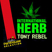 International Herb by Tony Rebel