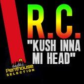 Kush Inna Mi Head by RC