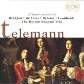 Telemann: 12 Sonate Methodiche di Various Artists