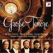 Große Tenöre von Various Artists
