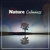Nature Calmness – Birds Sounds to Relieve Stress, Healing Therapy Sounds, Music to Calm Down & Relax de Nature Sound Collection