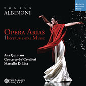 Albinoni: Opera Arias and Concertos - The Baroque Project, Vol. 4 by Various Artists
