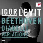 Diabelli Variations - 33 Variations on a Waltz by Anton Diabelli, Op. 120 de Igor Levit