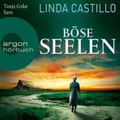 Böse Seelen (Gekürzte Lesung) von Linda Castillo