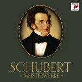 Schubert: Meisterwerke von Various Artists