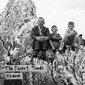 Stone by Desert Seeds