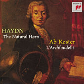Haydn:  Works for Horn by L'Archibudelli