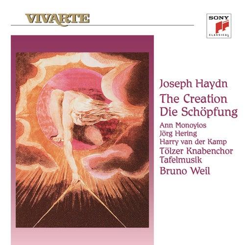 Haydn: Die Schöpfung by Bruno Weil