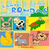 Canti Rondas - Los Animales de Las Gatitas