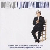 Homenaje A Juanito Valderrama by Juanito Valderrama