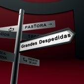 Grandes Despedidas by Pastora