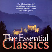 The Essential Classics (Vol 5) von Various Artists