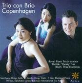 RAVEL, M.: Piano Trio in A minor / DVORAK, A.: Piano Trio No. 4 / BLOCH, E.: 3 Nocturnes (Copenhagen Trio con Brio) by Copenhagen Trio con Brio