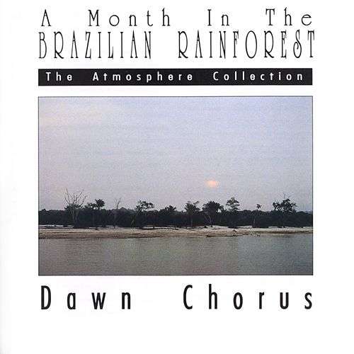 A Month In The Brazilian Rainforest: Dawn Chorus by The Atmosphere Collection