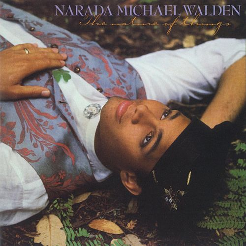 The Nature Of Things by Narada Michael Walden