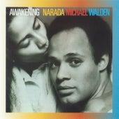 Awakening by Narada Michael Walden