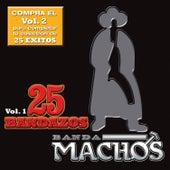 25 Bandazos de Machos de Banda Machos
