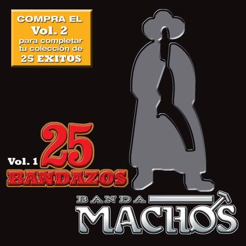 25 Bandazos de Machos by Banda Machos