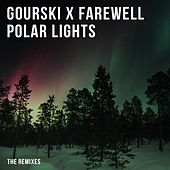 Polar Lights (The Remixes) by Gourski