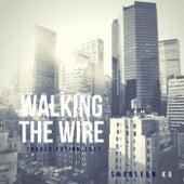 Walking the Wire (Charts Fusion 2017) de Sharleen Ka