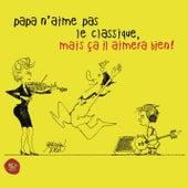 Papa n'aime pas le classique, mais ça il aimera bien ! de Various Artists