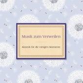 Musik zum Verweilen von Various Artists